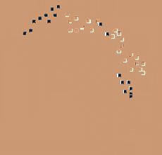 cfao-expansion-geographique-1
